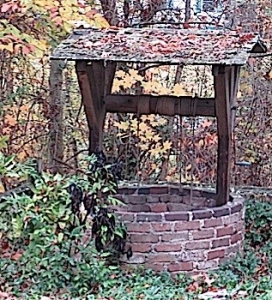 Autumn_Well_JT_sm