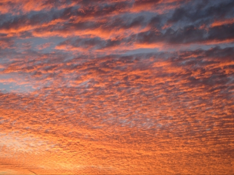 Dramatic_Sunset