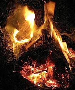 fire bouquet 7_JT_sm