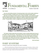 Fundamental_Forests